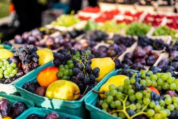 124 Street Farmer's Market Fruit Stand   Edmonton, Alberta